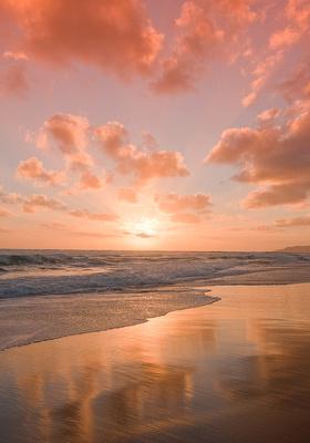 SIMMONDS__Johannah_Beach_4045_MF